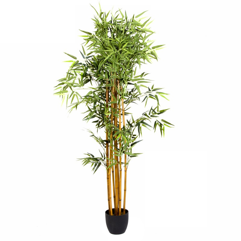 Plante artificielle bambou 180cm for Belle plante artificielle