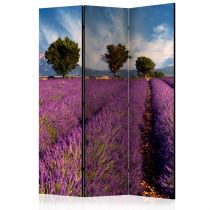"Paravent 3 Volets ""Lavender Field in Provence, France"" 135x172cm"