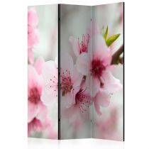 """Paravent 3 Volets """"Spring Blooming Tree Pink Flowers"""" 135x172cm"""
