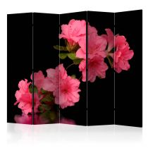 "Paravent 5 Volets ""Azalea in Black"" 172x225cm"