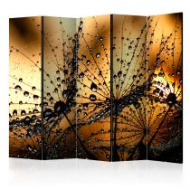 "Paravent 5 Volets ""Dandelions in the Rain"" 172x225cm"