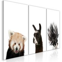 "Tableau Imprimé ""Friendly Animals Collection"""
