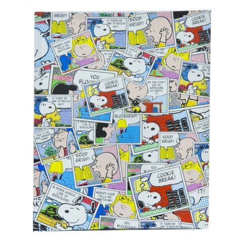 "Cadre Toile ""Snoopy"" 40x50cm n°2"