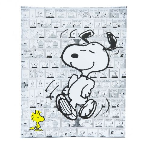 "Cadre Toile ""Snoopy"" 40x50cm n°4"