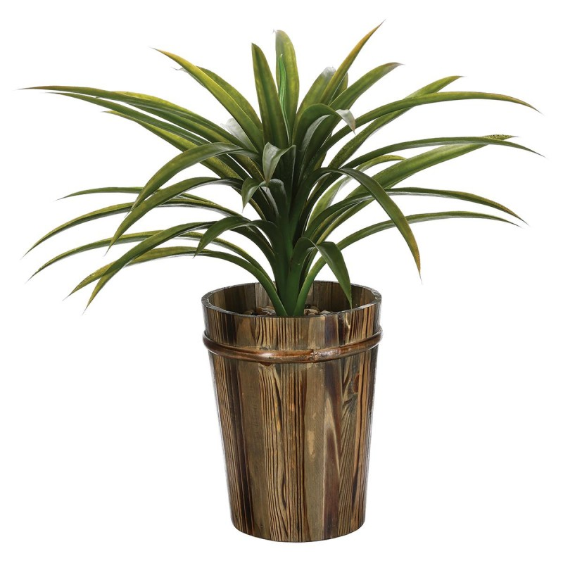 Plante yucca prix for Belle plante artificielle