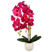 "Plante Artificielle ""Orchidée"" 70cm Rose"
