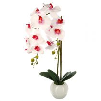 "Plante Artificielle ""Orchidée"" 70cm Blanc & Rose"