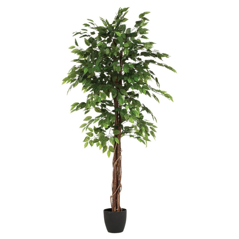 Plante artificielle ficus 180cm for Ficus plante interieur