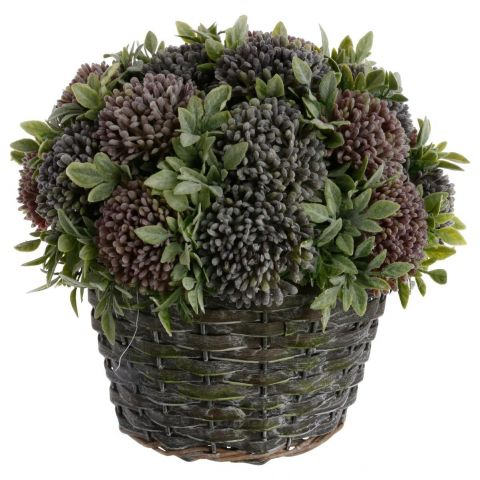 "Composition Florale & Pot en Osier ""Allium"" 25cm Vert"