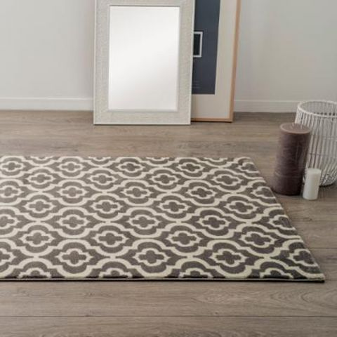 "Tapis de Salon ""Marvin"" 120x170 Gris"