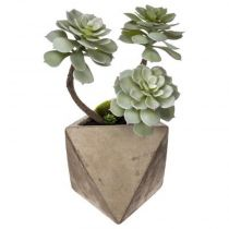 "Plante Grasse Artificielle ""Geom"" 30cm Naturel"