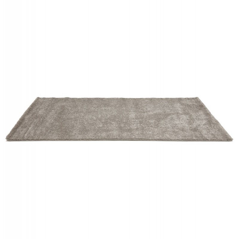 tapis de salon madie 160x230cm gris. Black Bedroom Furniture Sets. Home Design Ideas