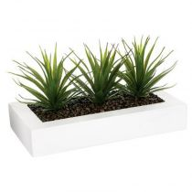 "Centre de Table Aloe Vera ""Plant"" 31cm Blanc"